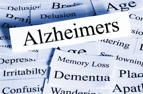 alzheimer s brain plasticity and alzheimer s disease