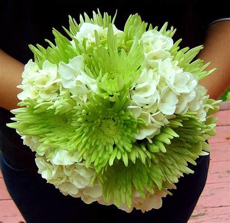 mum flower arrangement pink jpeg green spider mums and pink flowers on