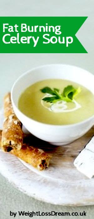 Detox Burning Soup Diet by Here Is My Burning Celery Soup As Featured On My 7 Day