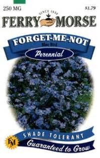 Ferry morse perennial flower seeds 1050 forget me not blue bird 250