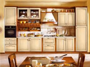 Kitchen Ideas With Cabinets by Kitchen Cabinet Designs 13 Photos Home Appliance