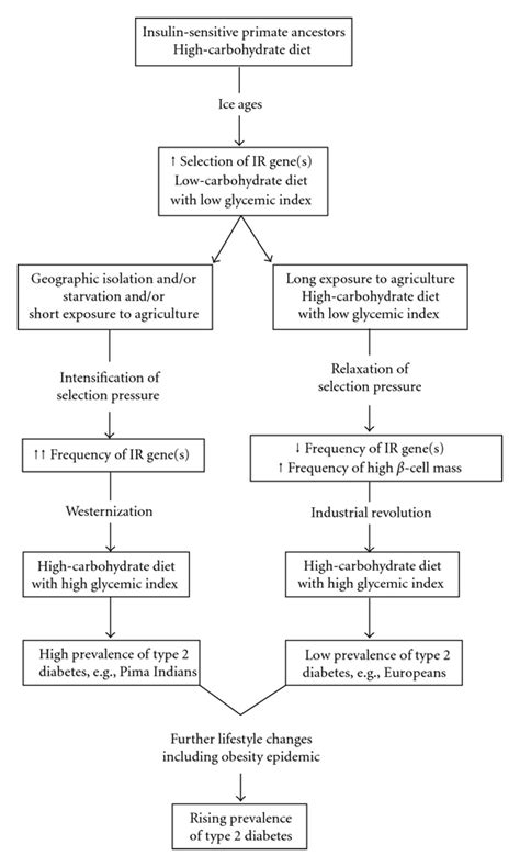 carbohydrates essay writing my research paper lipids and carbohydrates