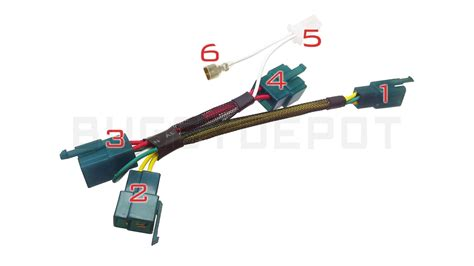 gy6 8 pole stator wiring diagram wiring diagram with