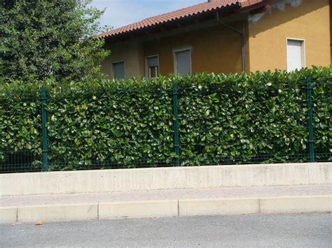 recinzione da giardino pannelli per recinzioni giardino altezza recinzioni in ferro