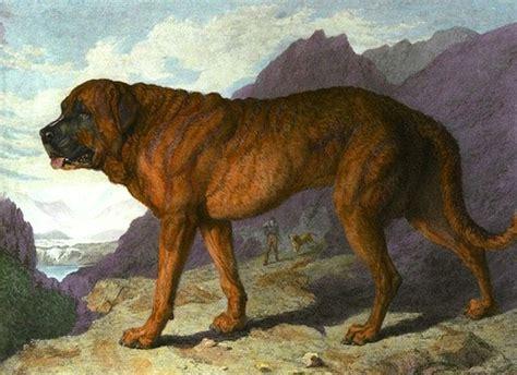 extinct dogs extinct breeds 171 the pyramid roadhouse