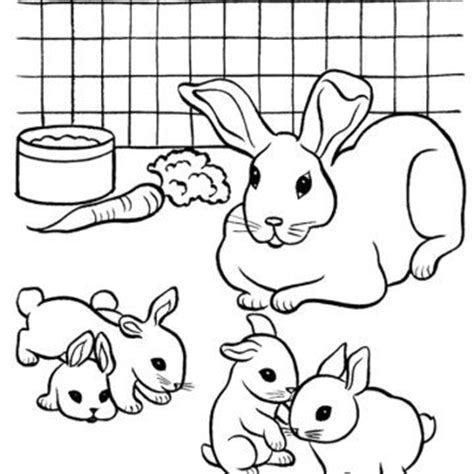 rabbit hutch coloring page pin by beth moorhead on rabbits crafts pinterest