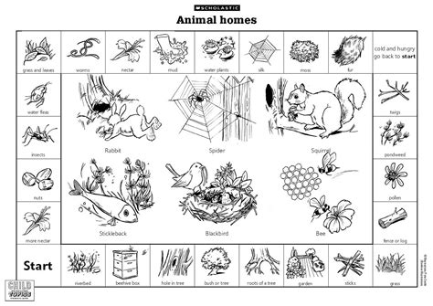printable animal homes lai mooi keow d20102042511 animals lesson where animals live
