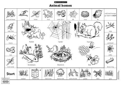 Lai Mooi Keow D20102042511 Animals