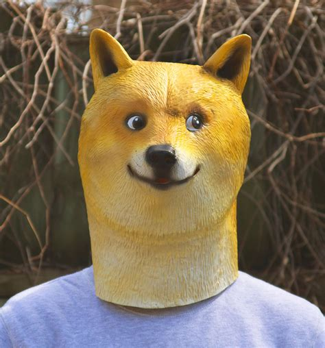 Tips To Buy Home In 2017 doge mask the awesomer