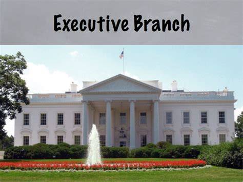 Executive Branch Cabinet The Branches Of Government Create Webquest