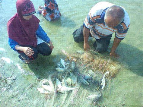 Jala Ikan 9 jual jala ikan