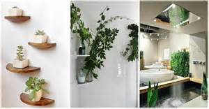 Ideas For Indoor Potted Plants Design Plants In Bathroom Design Ideas Home Interior Design Kitchen And Bathroom Designs