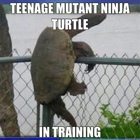 Funny Teenage Memes - family friendly tmnt memes plus friday frivolity tmnt