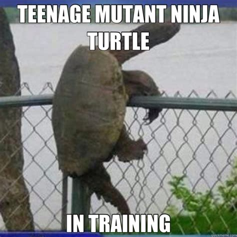 Teenage Mutant Ninja Turtles Meme - family friendly tmnt memes plus friday frivolity tmnt