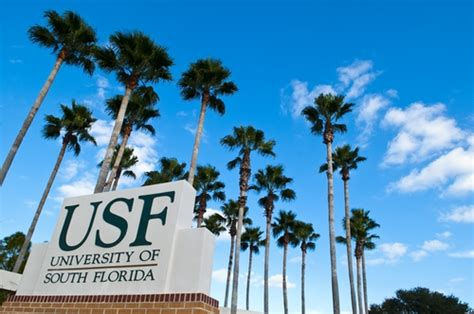 Of Florida Mba South Florida by Of South Florida Usf Photos Us News Best