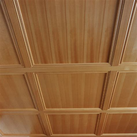 Paneled Ceiling by Idsg Materials Paneling Exles