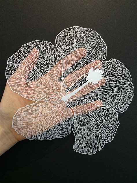 How To Make Flowers By Paper Cutting - beautiful and delicate cut paper flowers visual broadcast
