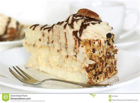 pekannuss kuchen pekannuss kuchen stockbild bild 9113291
