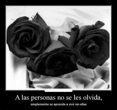 imagenes de rosas negras con frases de amor rosas negras mo 241 os y lazos con mensajes y frases de