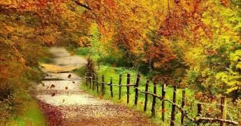 beautiful wallpapers wallpapers beautiful autumn scenery wallpapers
