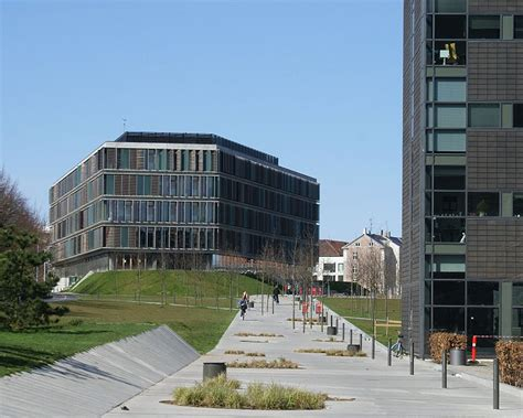 Copenhagen School Of Business Mba by Call For Papers Varieties Alternatives And Deviations