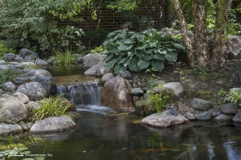 Aquascapes Inc by Springtime Pond Changes Aquascape Inc