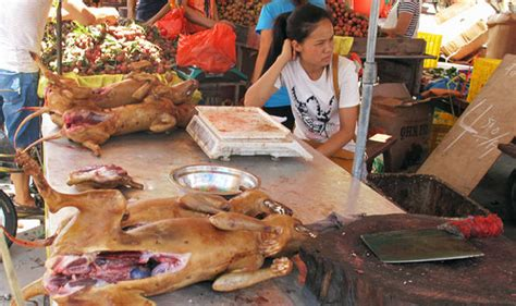 yulin festival yulin festival punters flock in droves to sick event in china world news