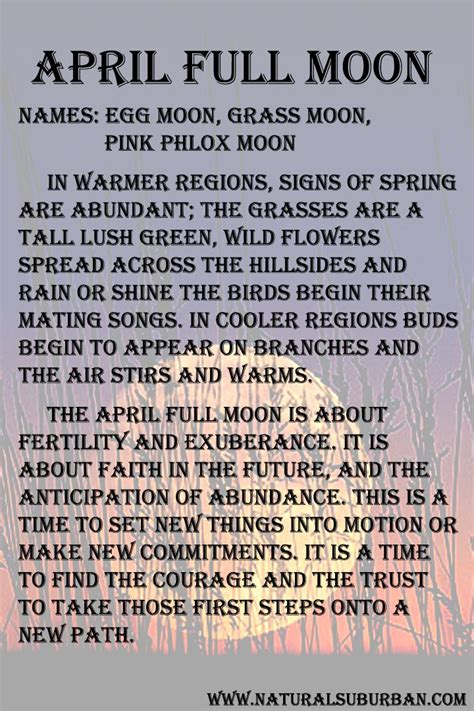 pink moon meaning 17 best images about spells of magick on pinterest wicca
