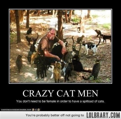 Crazy Cat Lady Meme - 345 best images about crazy cat ladies on pinterest i