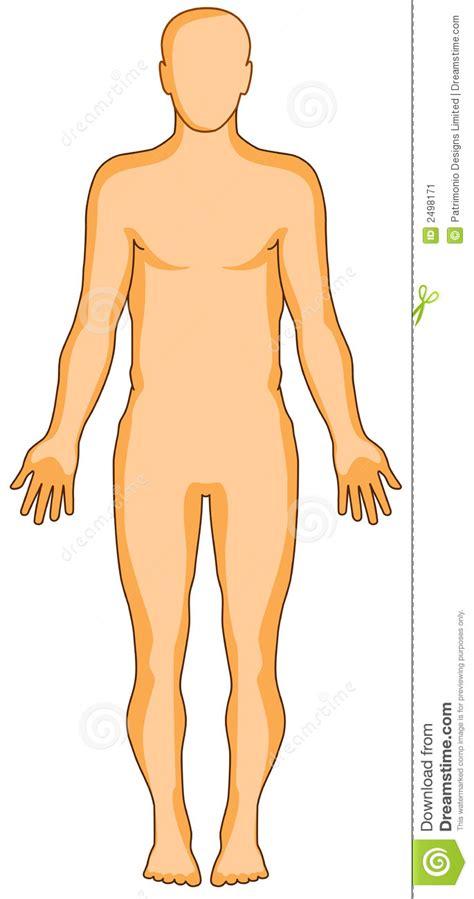 imagenes abstractas humanas figura humana de la anatom 237 a ilustraci 243 n del vector