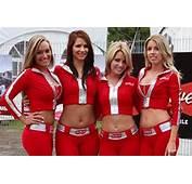 Budweiser Girls  Serge K Flickr