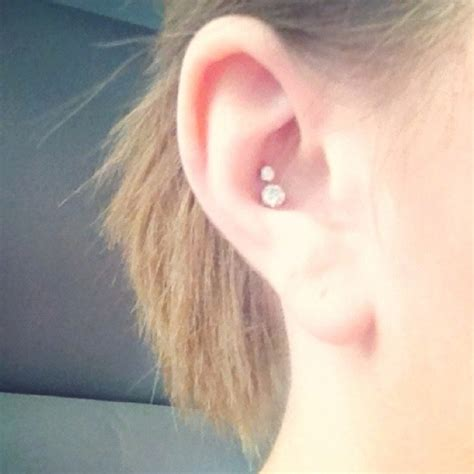 inner conch want my inner conch pierced so bad piercings