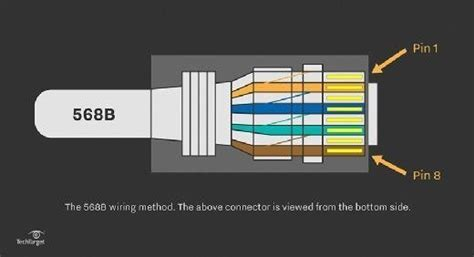 straight  cable learn  utp wiring  color coding