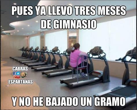 Memes Del Gym - operaci 243 n bikini nuevamente anulada cabras espartanas