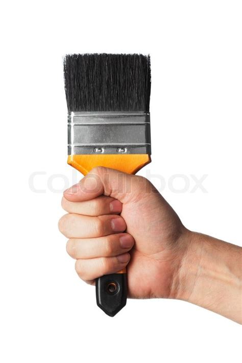 holding a clean new paint brush with a firm grip stock photo colourbox