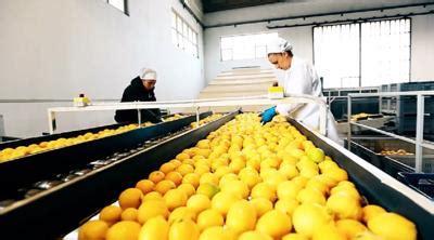 gdo alimentare da agroalimentare a gdo 1 300 opportunit 224 di lavoro estive