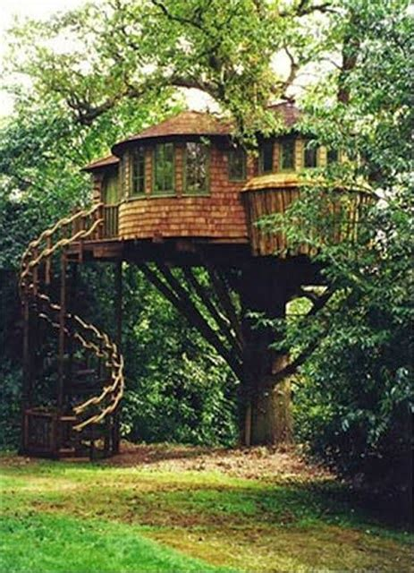 coolest treehouses mindblowing planet earth world s best tree house