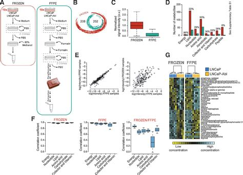 ffpe sections metabolic profiling in formalin fixed and paraffin