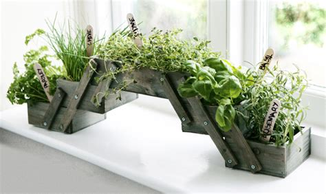 shabby chic foldable herb planter kit  seeds grow