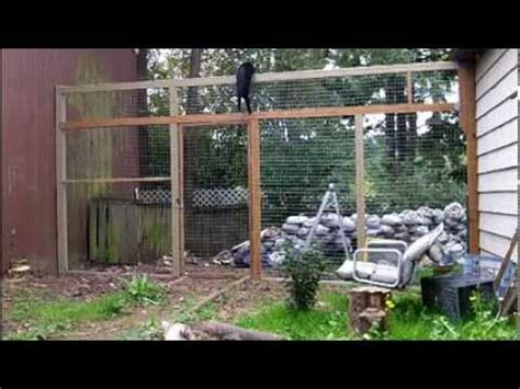 how to keep your cats from climbing a fence they can t