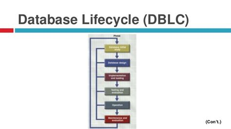 database design process adalah diagram of database life cycle images how to guide and
