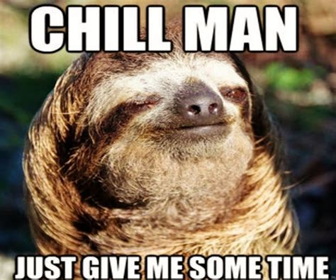 Sloth Meme - image gallery sloth dying