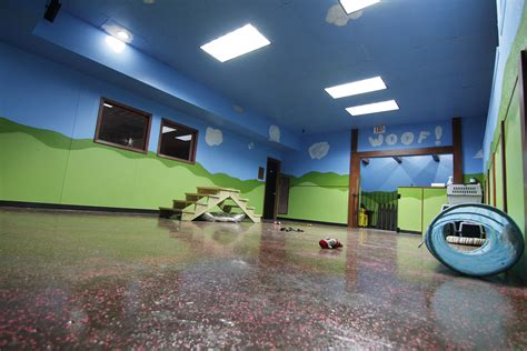 Rubber Flooring For Daycare by Rubber Flooring For Daycare Alyssamyers