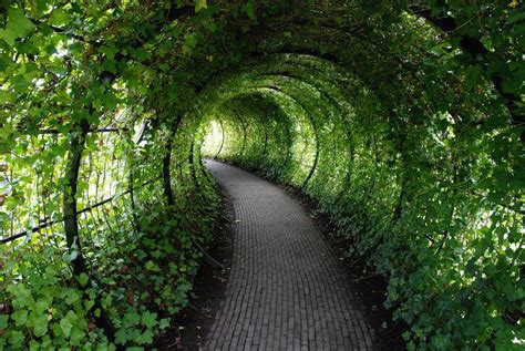 pics of gardens step inside the world s most dangerous garden if you