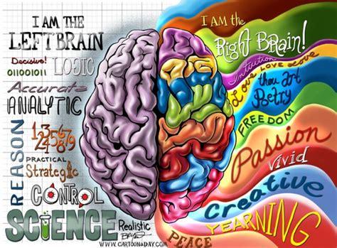 especializaci 211 n hemisferica apuntes de psicologia