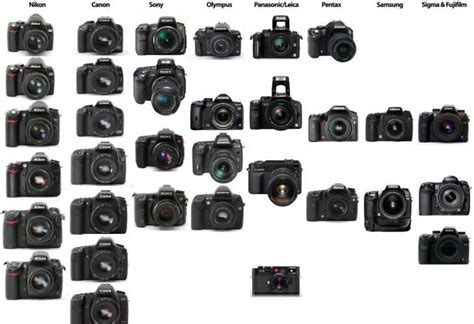 mid range dslr   offering product reviews net