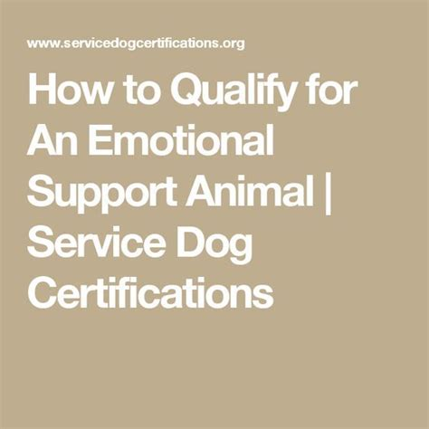 how to a service for emotional support 25 best ideas about emotional support animal on service