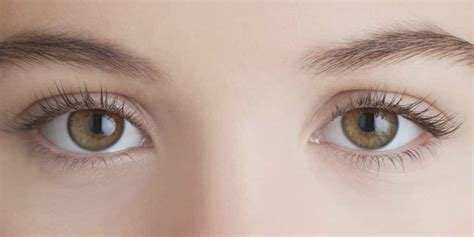 the eyes of the the role of eye movements in stroke patient birkdale neuro