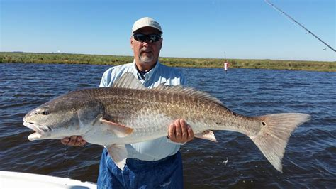 charter boat fishing new orleans redfish fishing charters new orleans new orleans fishing