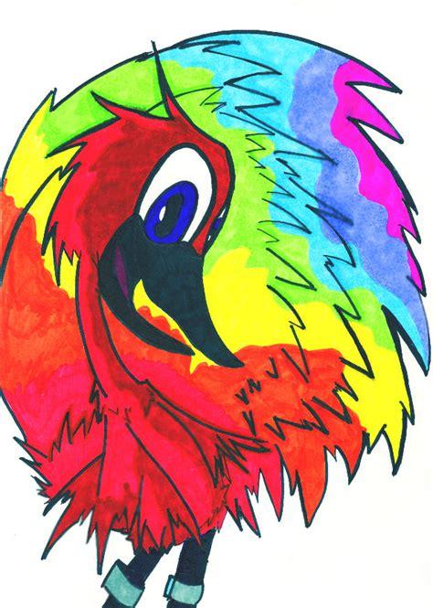 rainbow bird by inavangen on deviantart the retarded rainbow bird by spukii on deviantart